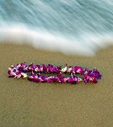Plumeria lei and wave on the beach.