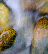 Stream water flowing over smooth stones.