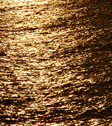 Golden sunset reflected on the sea.