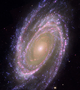 M81 Galaxy from the Hubble telescope.